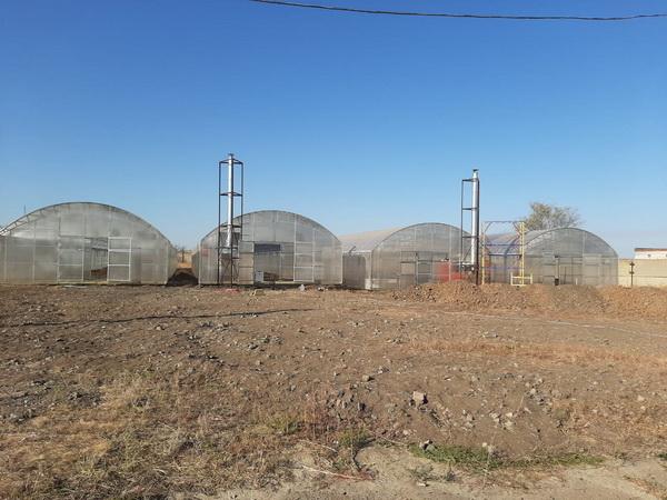 В КП-12 ГУФСИН России по Ростовской области построены теплицы для круглогодичного выращивания овощей