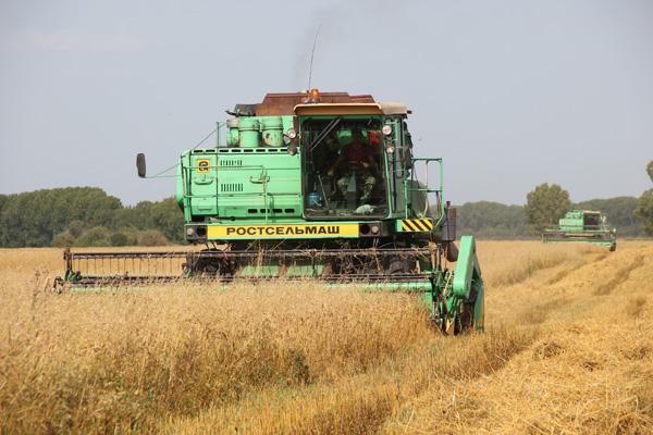 В сельскохозяйственных колониях-поселениях ГУФСИН России по Кемеровской области-Кузбассу завершилась уборочная кампания